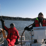 Festive Weekend Sail in the Solent added by Former Member