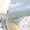 Newby, Novice, Curious - Day Sailing added by Anita