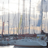 Taittinger Cup - Social & Light Racing | RSYC added by Rohan