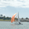 Taittinger Cup - Social & Light Racing | RSYC added by Hema
